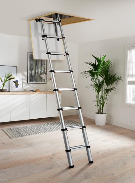 Loft services Kingston